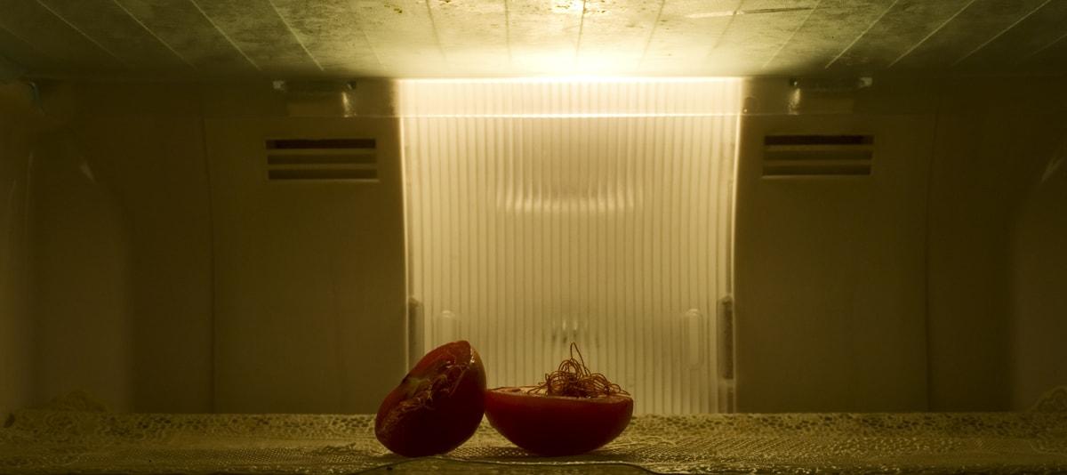 Prajakta Potnis, <em>still life, </em> 2009